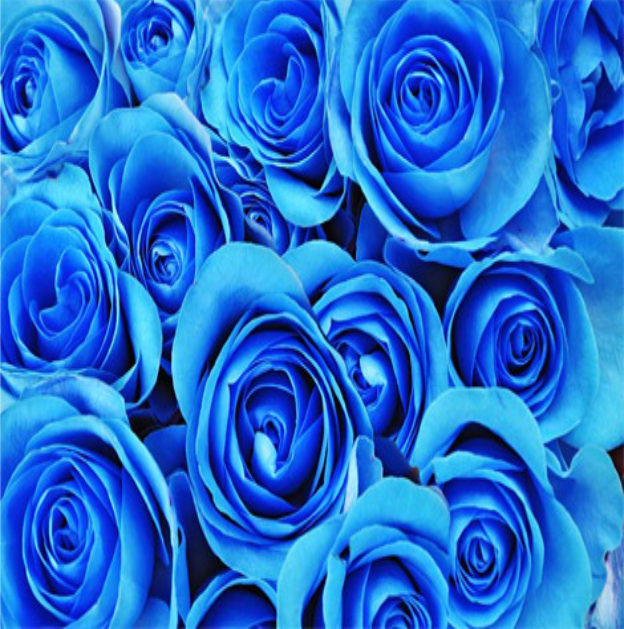 Fondo Inconsutil Hermoso Con Las Mariposas Azules